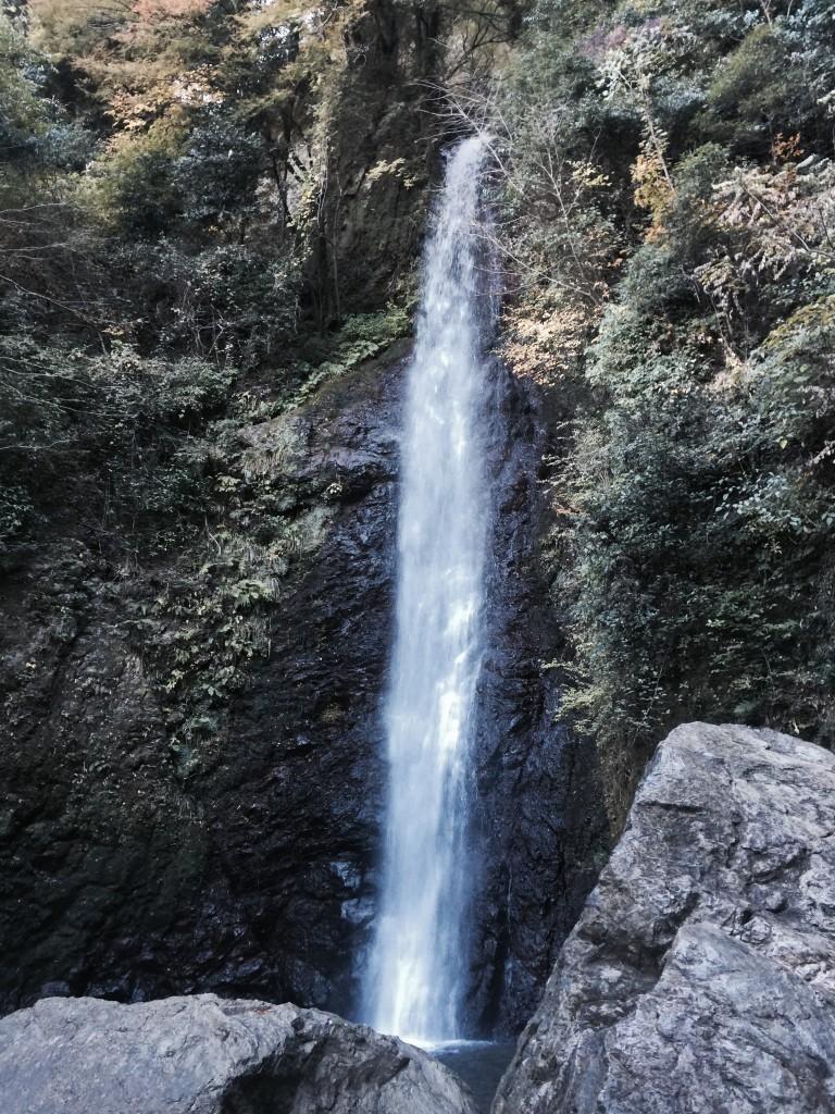 養老の滝_05