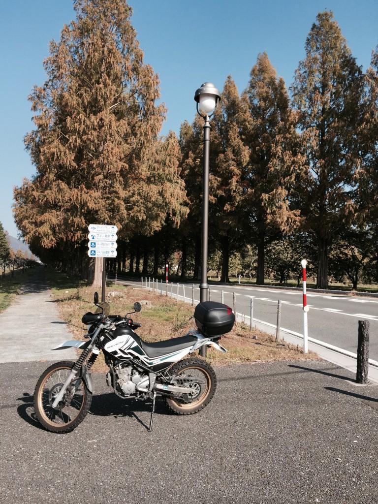 マキノ高原_03