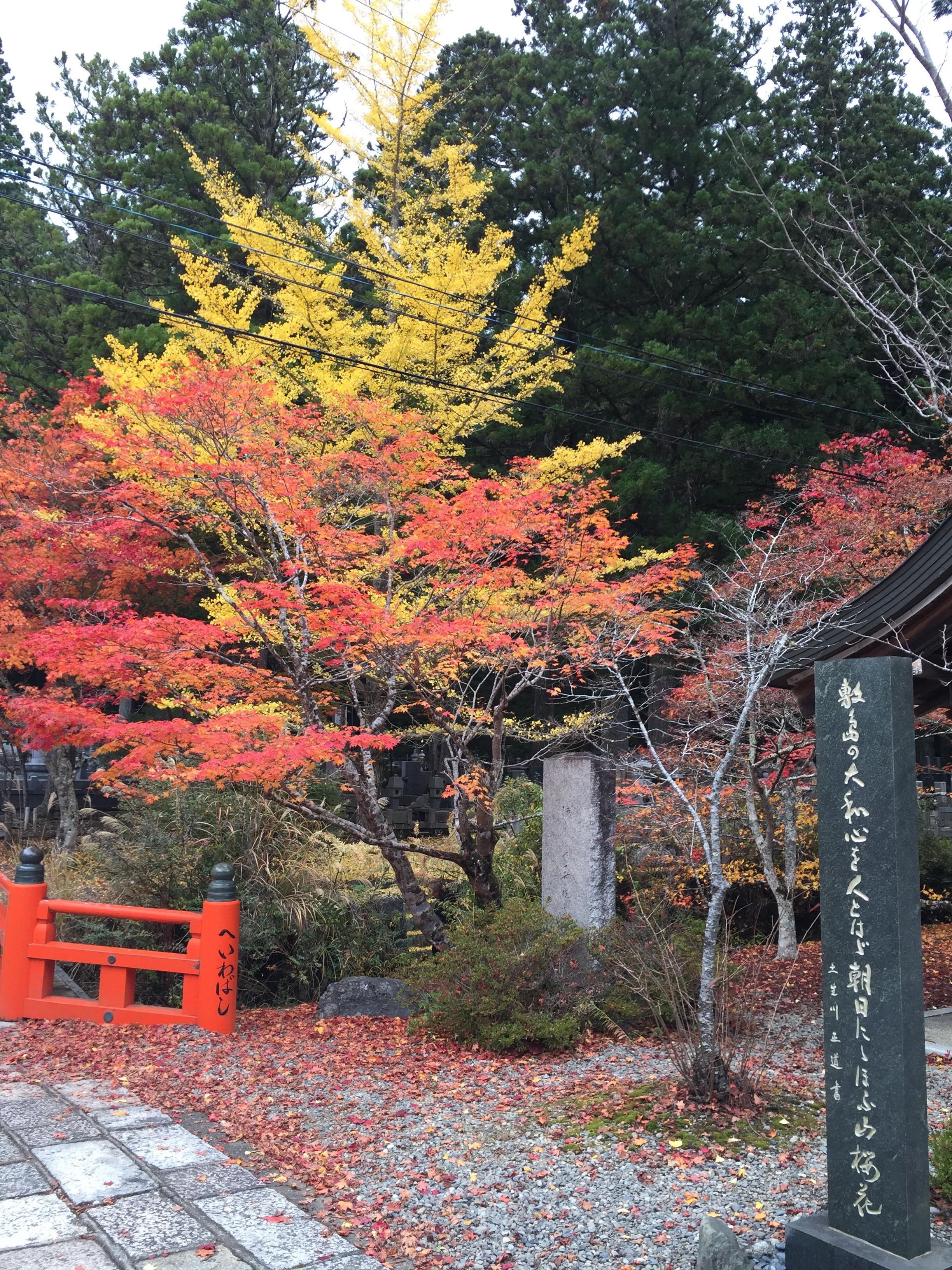 金剛峰寺奥の院