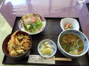 道の駅宇陀路室生_ミニ天丼セット
