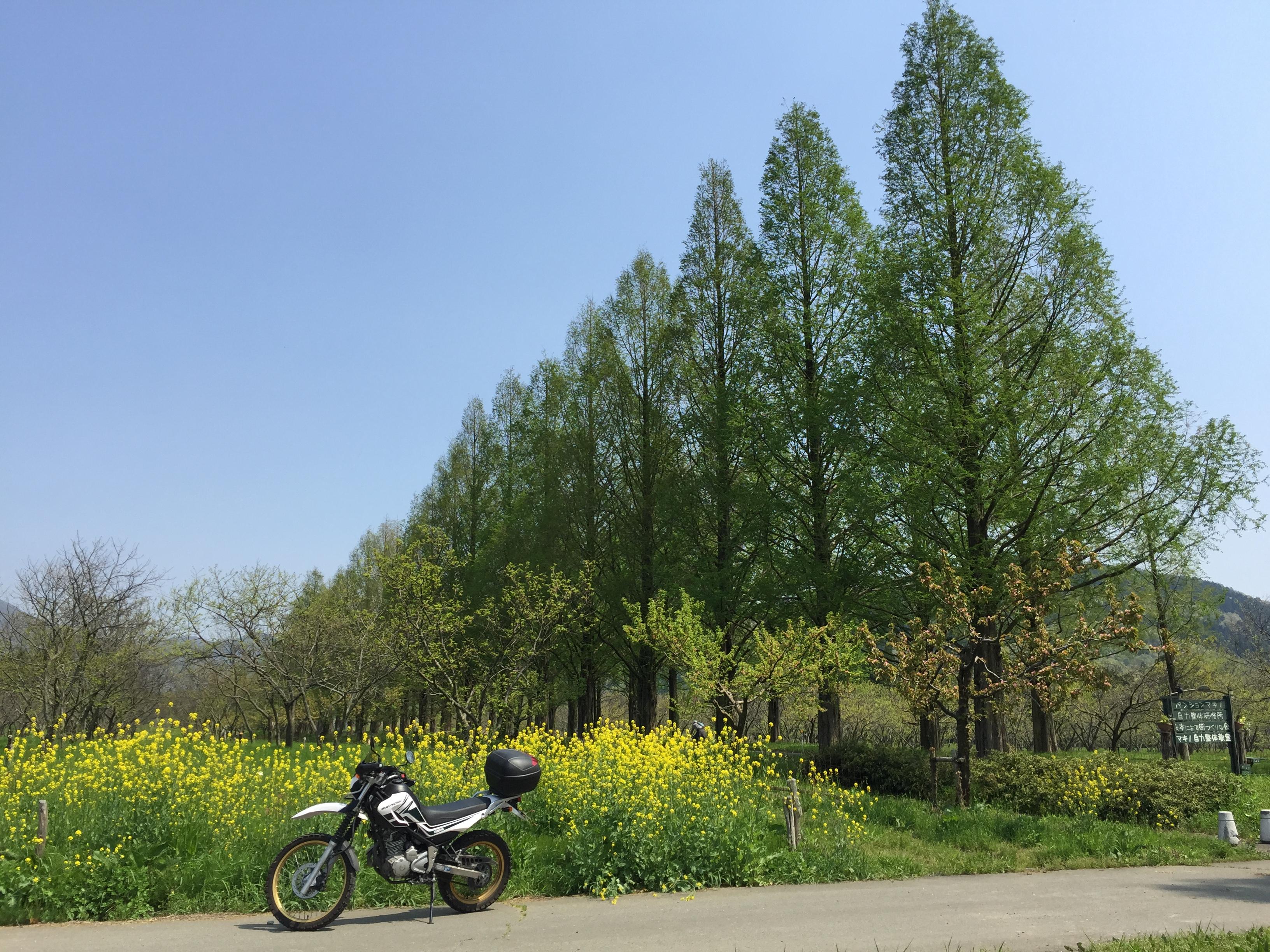 セローでツーリング マキノ高原〜奥琵琶湖