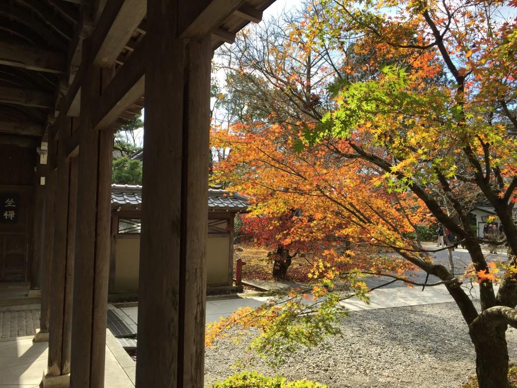 永源寺の秋_000