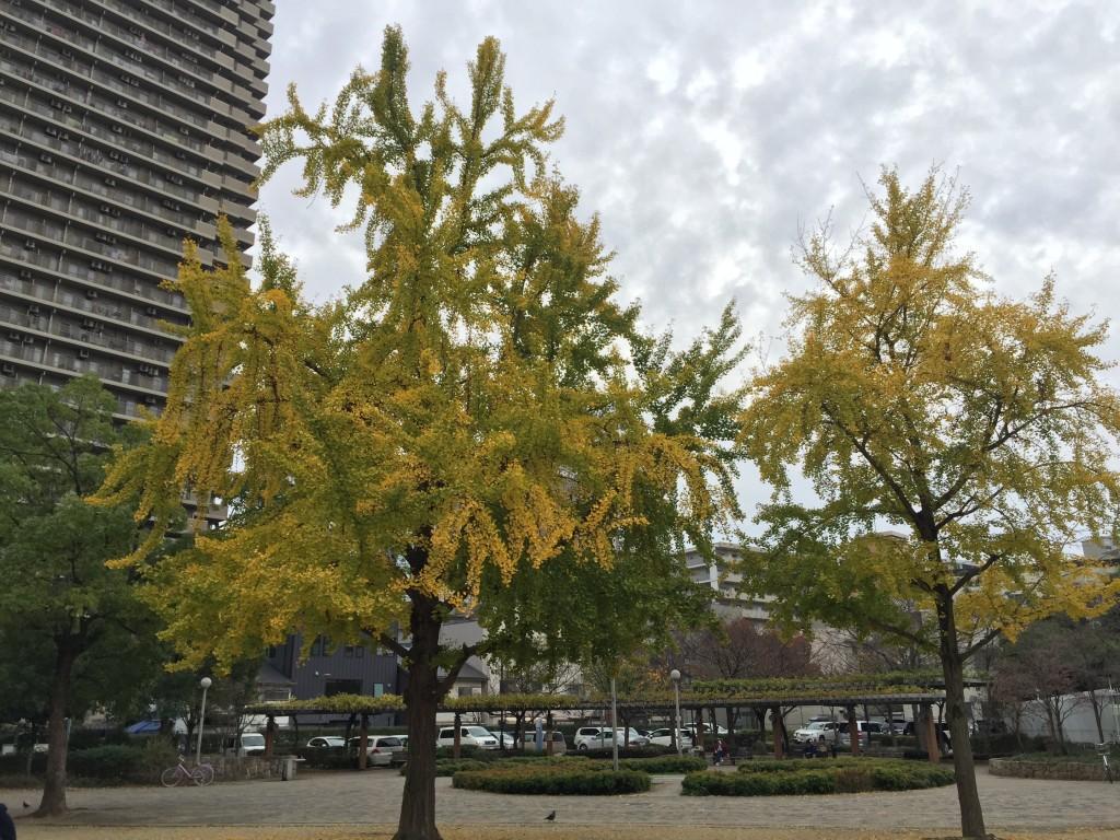 下福島公園_000
