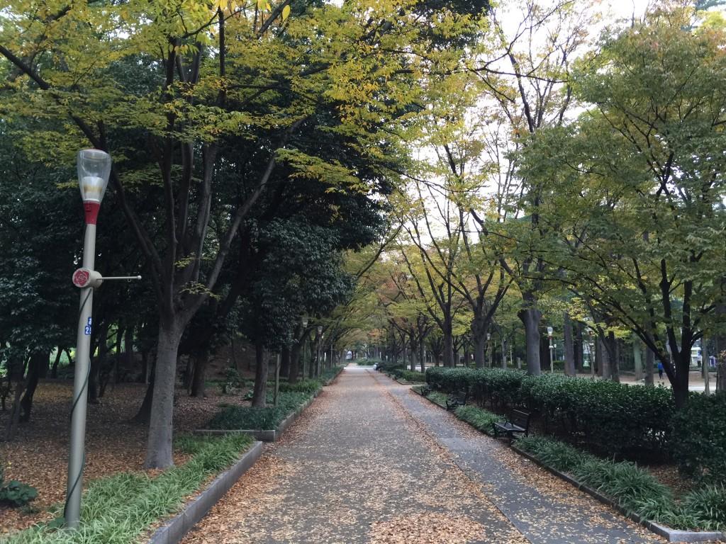 靱公園_000