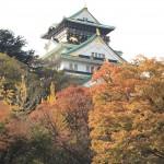 セローでお散歩 大阪の秋
