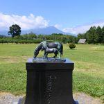 木曽馬の里_018