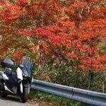 XMAXでお散歩 九頭竜湖の紅葉