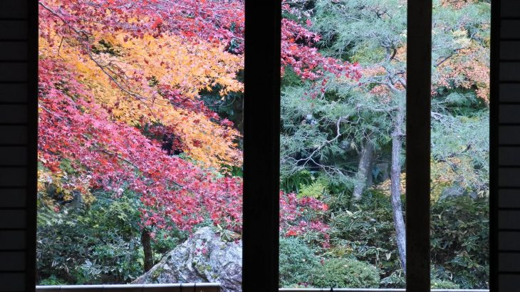 XMAXでお散歩 京都の紅葉