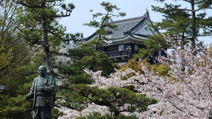 XMAXでお散歩 岡崎公園の桜