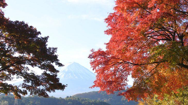 XMAXでお散歩  富士五湖の秋