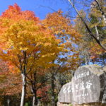 XMAXでお散歩 飛騨高山の紅葉