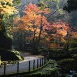 XMAXでお散歩 福井の紅葉
